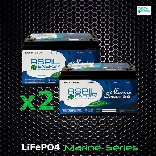 Комплект аккумуляторов литий-ионных (LifePO4), тяговые AE-LFP2460 x2 акб (24V,120Ah)
